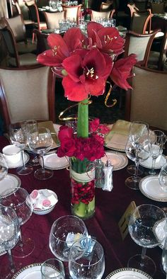 Amaryllis Topiary Centerpiece    Accented with red and gold decorative wire, two stems of amaryllises are bundled together to create a topiary look. Photo Courtesy Blumz by...JRDesigns in metro Detroit. Robbin Yelverton, AIFD, AAF, PFCI, designer.  www.blumz.com