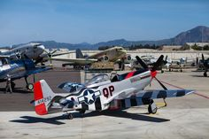 The P-51 Mustang Man O' War is displayed among the CAF's other restored warbirds. Commemorative Air Force