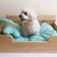 Camas perro : Cama en madera natural