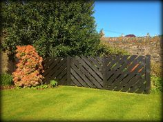 Freshly painted Craigatin fence!