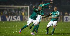Palmeiras Campeão da copa do Brasil 2012 - Invícto!