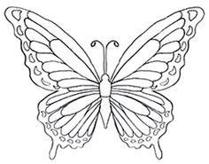 Die 533 Besten Bilder Von Butterfly Coloring Coloring Pages