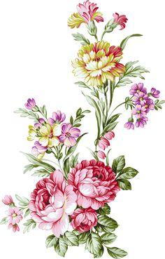 D Flowers, Folk Art Flowers, Birth Flowers, Bunch Of Flowers, Botanical Flowers, Types Of Flowers, Flowers Nature, Beautiful Flowers, Flower Pattern Design