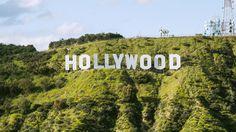 Cine Gear: Sony, Panasonic, Canon Unwrap New Digital Cinema Camera Plans #FansnStars