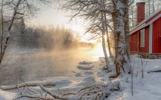 Golden Misty Morning by Anssi karilahti on 500px