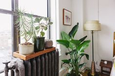 House Tour: A Warm, Refined Oasis in Indianapolis | Apartment Therapy