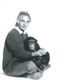 Terrence Stamp and Jed in 'Link' Terence Stamp, High Horse, Dramatic Arts, Best Supporting Actor, Classic Movie Stars, Acting Career, London Art, Primates, Most Beautiful Man