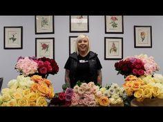 January 2014 Wholesale Flower Product Showcase: Roses. Varieties featured: Polo, Sahara, Quick Sand, Senorita, Crem de la Crem, Maritine, Milva, Cherry O, Early Grey, Peach Avalanche, Sophia, Capriccio and Sexy Red.