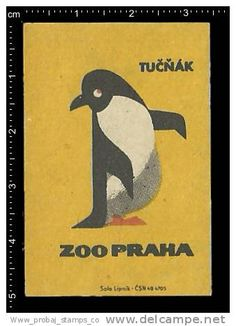Poster stamp - matchbox label -   animals, Prague Zoo, Prager Zoo, penguin, Pinguin