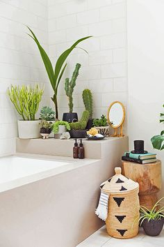 Lush Life - Makeover Your Shower And Tub With These Simple Styling Tricks - Photos