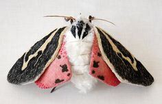 Fabric sculpture Large banded tiger moth Apantesis by YumiOkita Giant Moth, Colorful Moths, Tiger Moth, Bordados E Cia, Butterfly Art, Butterflies, Butterfly Crafts, Textile Artists, Soft Sculpture