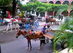Horse-drawn carriages, Parque Central, Granada, Nicaragua by Paul McClure DC, via Flickr