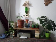 Ich habe viele verschiedene Pflanzen Ableger gemacht und mittels alter Bücher und kleiner weiterer Deko Ideen einen schönen kleinen arbeitsschreibtisch dekoriert Planter Pots, Canning, Home, Old Books, Table Desk, Writing, Decorating Ideas, Plants, Homes