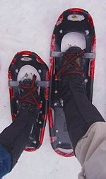 Snowshoeing - I want to learn