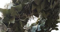 Prachtige eucalyptuskrans op statief. De krans is 30 cm doorsnee. Hoogte met statie...