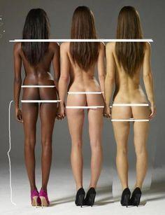 인종에 따른 체형