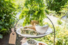 Leckere Wildkräuter-Rezepte aus dem Garten im Frühling mit Giersch