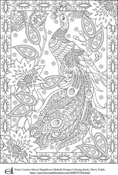 """Peacock Adult Coloring Page"" (quote) via azcoloring.com Several pictures to print and color"