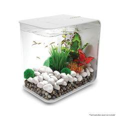 biOrb Flow 15 Aquarium with LED - 4 Gallon, White Aquaponics Greenhouse, Aquaponics System, Hydroponics, Aquaponique Diy, Diy Crafts, Biorb, Aquarium Setup, Water Plants, Led