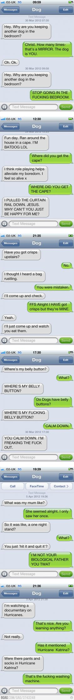Text messages from my dog.  Hilarious!  Read it!