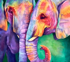 OK, one more elephant or two.