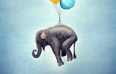An elephant flies through a Cerulean sky with the help of colorful balloons. We wonder if he knows that Cerulean Blue was the Pantone color of the year in 2000...