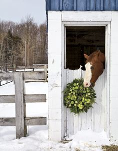 So fun.  When I have horses I shall put wreaths on their stalls at holiday time.  From the home of Pia and Stefan Wiesen, photography by Robin Stubbert forCountry Living