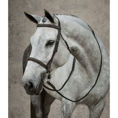 7 Best TACK images in 2019 | Dover saddlery, Saddles, Roping