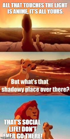Simba Shadowy Place Meme | ALL THAT TOUCHES THE LIGHT IS ANIME, IT'S ALL YOURS. THAT'S SOCIAL LIFE! DON'T EVER GO THERE! | image tagged in memes,simba shadowy place | made w/ Imgflip meme maker