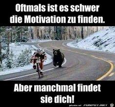 lustiges Bild 'Motivation.jpg'- Eine von 24898 Dateien in der Kategorie 'witzige Bilder' auf FUNPOT.