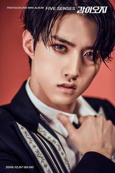 pentagon kpop profile, pentagon kpop members, pentagon five senses, pentagon five sense teaser imabes, pentagon 2016 debut