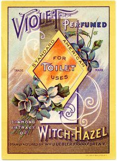 Old Design Shop ~ free digital image: vintage violet perfumed witch hazel label