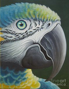 Wonderful acrylic on canvas of a parrot!