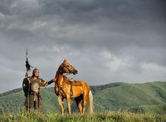 Steppe Nomad&Akhal-Teke horse