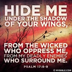 Psalm 17:8-9 KJV  Keep me as the apple of the eye, hide me under the shadow of thy wings,  9 From the wicked that oppress me, from my deadly enemies, who compass me about.
