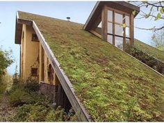 'Natuurlijk wonen': gids voor een bio-ecologisch bouwproject - Bio-ecologisch bouwen - Livios