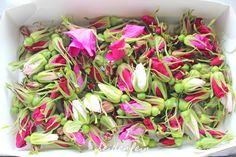 seidenfeins Dekoblog: Kartoffelrosenknospen Jute, Dekoblog, Celery, Cabbage, Vegetables, Bud, Garlands, Projects, Flowers