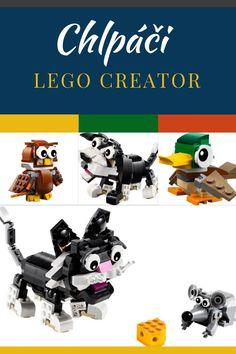 Mačka, myš, šteniatko, psík, sova, zajko, veverička a kačka - Chlpáči z parku (Lego Creator 31021 a 31044) sú skvelou voľbou pre chlapcov aj dievčatká. Lego Creator, The Creator
