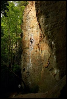 red river gorge...bought a rock climbing package for here! can't wait :-)