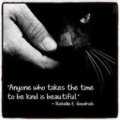 Love this.  Kindness to animals is such a desirable trait