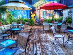 Amy's on the Avenue. Backyard. Wall paintings. Yes, it looks like New Orleans, but it's a bistro, cafe and gift shop in Crystal River, FL ( and excellent in all 3 capacities)