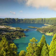 Travel Guide to Azores. Traveling tips to Azores. Angling and Birding in Azores. Things to keep in mind while traveling to the Azores islands. Forest Scenery, Forest Landscape, Lake Forest, Las Azores, Singles Cruise, Rio, Cruise Destinations, Best Cruise, Portugal Travel