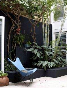 A courtyard wall can be painted black and plants grouped together to provide an intimate space BKF Butterfly chair Outdoor Rooms, Outdoor Living, Outdoor Decor, Small Gardens, Outdoor Gardens, Black Fence, Black Garden Fence, Butterfly Chair, Black Walls
