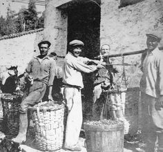 Bozcaada (Tenedos) üzüm satıcıları.