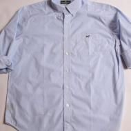 Southern Point, The Hadley Shirt