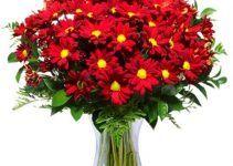 Ramos de Flores Rojas. Los ramos con flores de color rojo son los más conocidos, los más deseadas, y los más comprados de la actualidad. Te invito a que sigas leyendo para que de