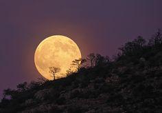 La mirada se mantiene fija en el fuego. La Luna llena, ya se oculta. Mi mente permanece hipnotizada.