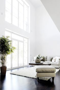 high ceilings, large windows, natural light