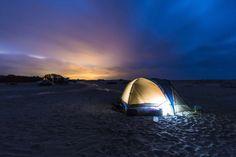 Share the Experience | Assateague National Seashore