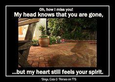 My heart still feels your spirit ♥